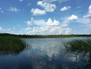 uciastok zemli s poberezjem ozera v prigorode vilniusa,sklypas ant ilgucio ezero kranto pardavimas