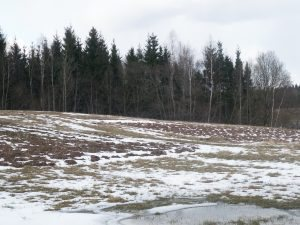 Недвижимость > Продаётся участок земли в Вильнюсе