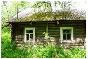 ucastok-zemli-s-domom-les-ozero-dlia-prozivanija